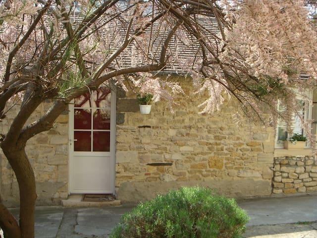 Ma Petite Maison - Saint-Vigor-le-Grand - Rumah