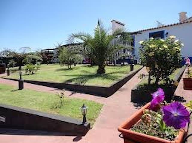 Casa Magnólia - Ponta Delgada  - Ev