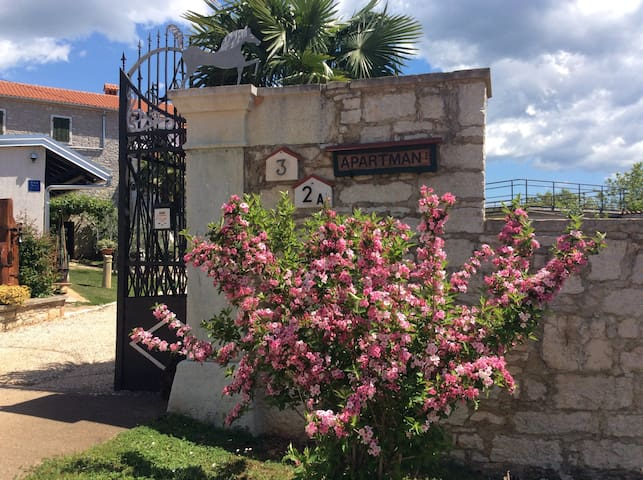 Apartmani Villa Allegra - Višnjan - Apartment