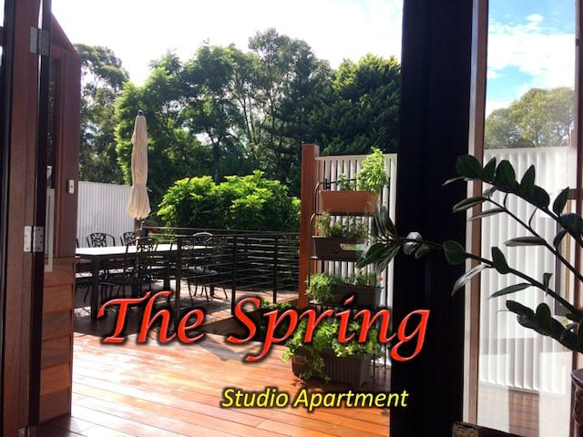 THE SPRING apartment in the hills - Perth - Appartement