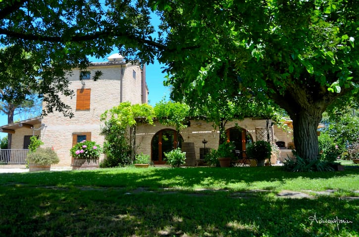 The Little Country House - Recanati - Ev