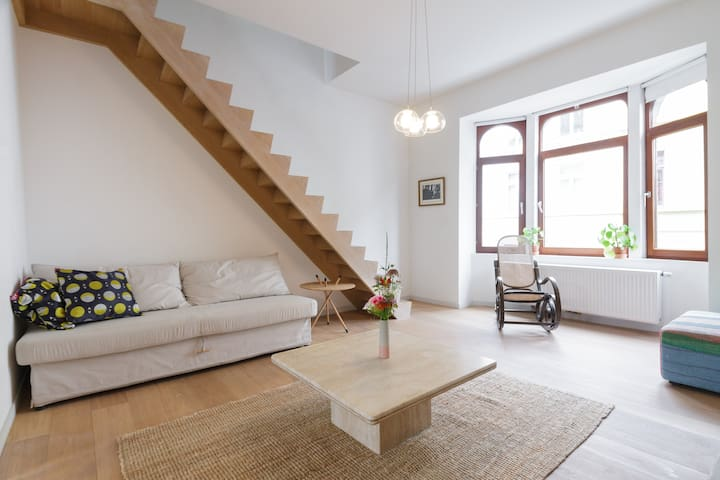 Well situated apartment for 4-6 in centre Ghent - 根特 - 公寓