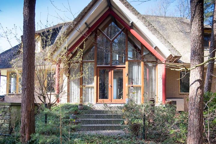 Compleet Landhuis, uniek gelegen! Nieuwe natuur. - Ommen - Hus
