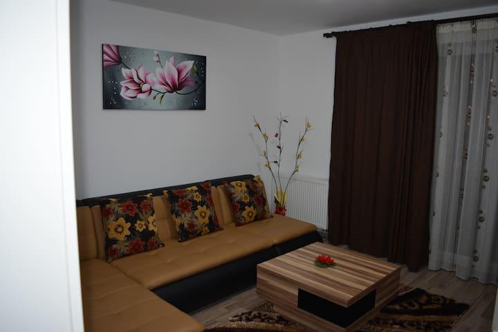 Classic Studio - Brașov - Daire