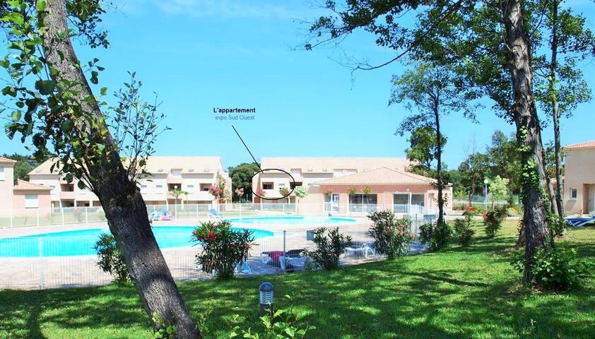 Superbe T2. 46m2, Piscine, Mer - Santa-Maria-Poggio - Appartement