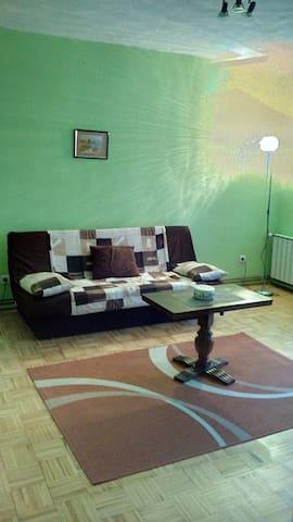 Vukovar River Side Apartment - Vukovar - Leilighet