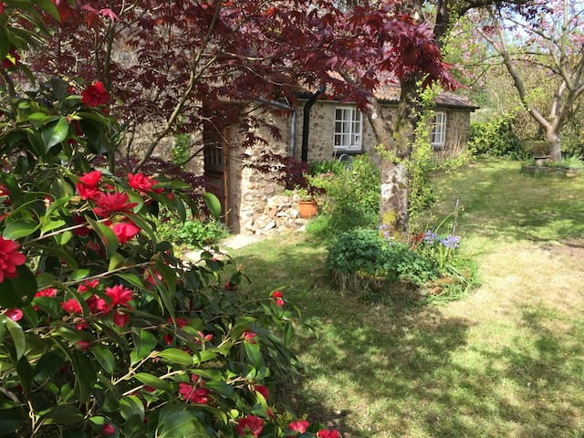 Charming old cottage, spacious rooms & garden - Culmstock  - Ev