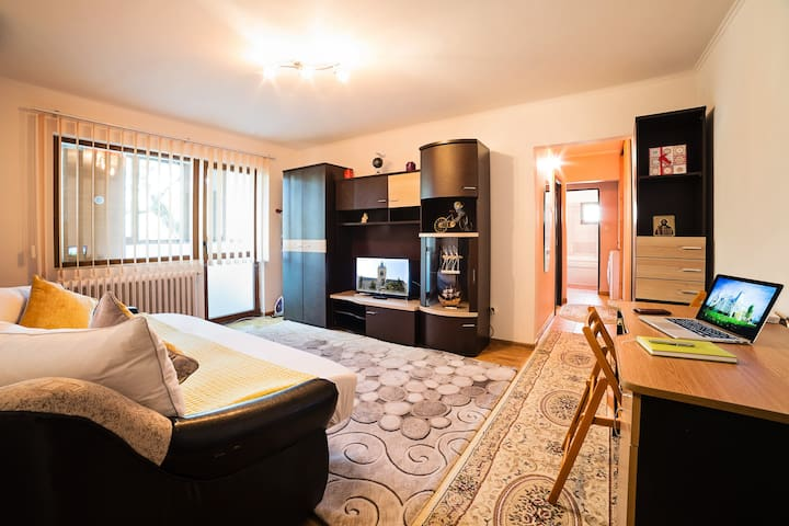 Comfortable 3 bedroom apartment in a quite area - Iași - Daire