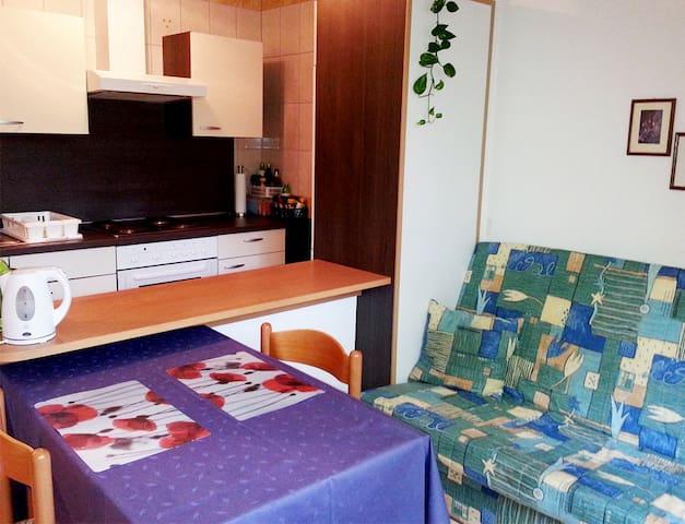 App for 2 in Vita center (massages, gym, yoga) - Rogaška Slatina - Appartement
