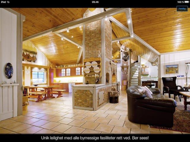 Unik, grandios Penthouse nær Oslo! - Mysen