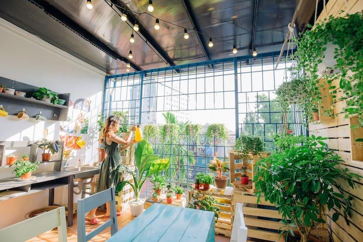 Momento - Rooftop Garden Room - Hanói - Casa