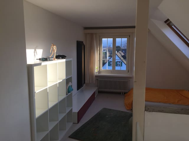 Grosses, helles Zimmer mit WLAN - Thalwil