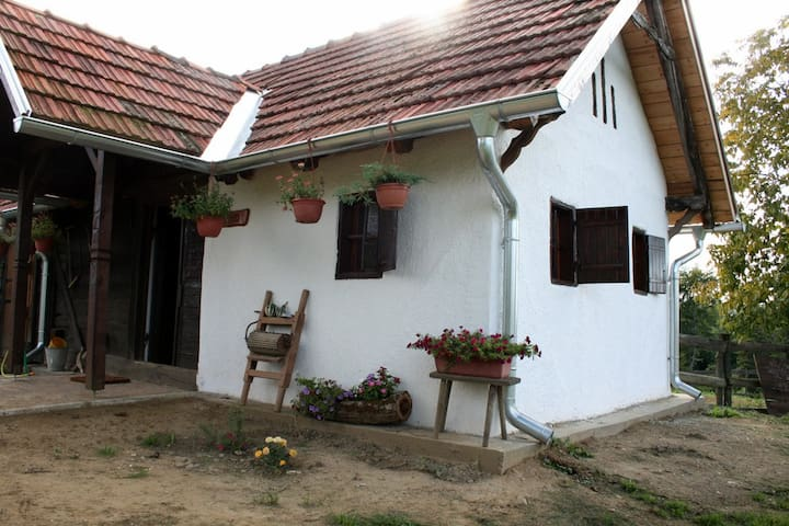 Old vineyard house converted into a rural house - Đurđevac