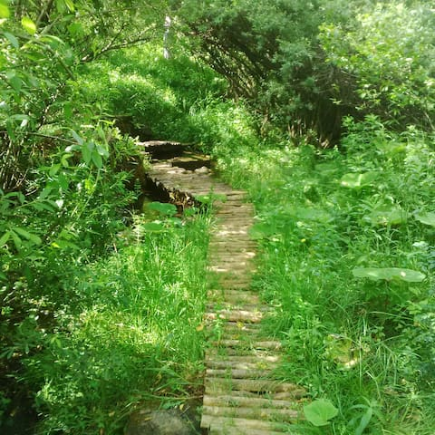 Croatia Park Plitvice - Homely studio Apt (3) - Rudanovac - Appartamento