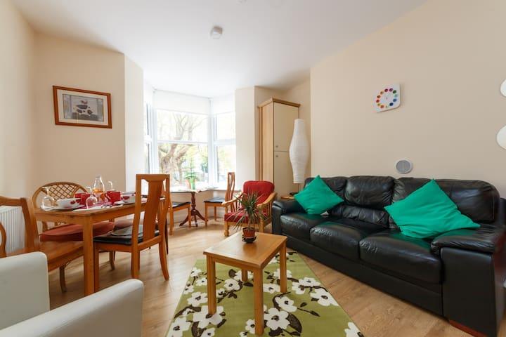 Beautiful Apartment with WiFi - Drumcondra - Huoneisto