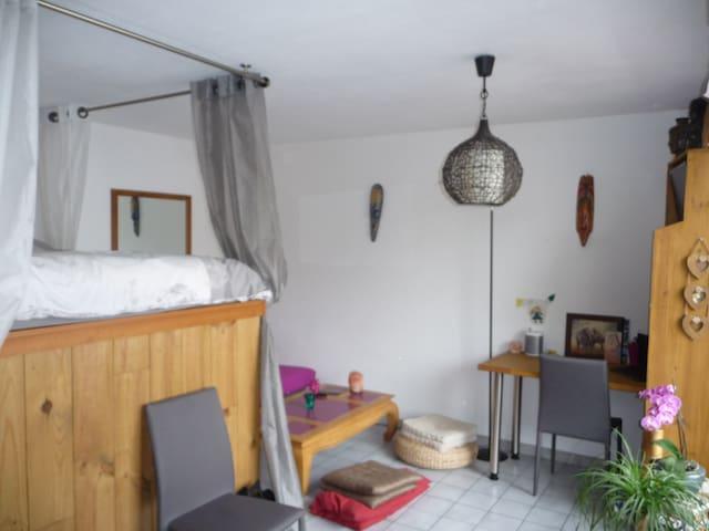 Studio Panorama - Viuz-en-Sallaz - Wohnung