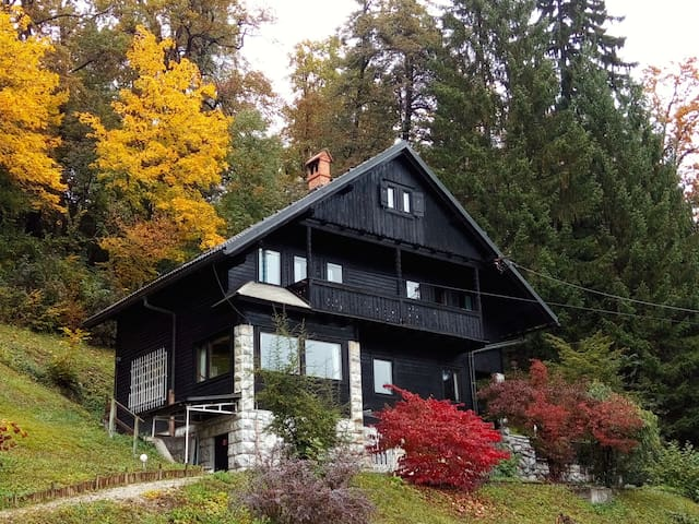 Gorgeous chalet with amazing lake view - Bled - Chalet