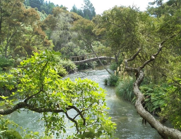 Quails' Calling Nestling amongst paradise! - Waikato - Hus