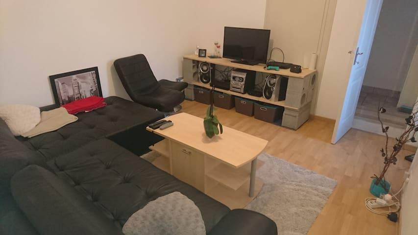 Petit logement très bien situé et agréable - Oulmes - Haus