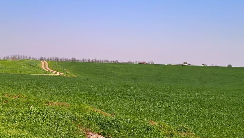 Nella verde campagna lodigiana - Graffignana - Hus