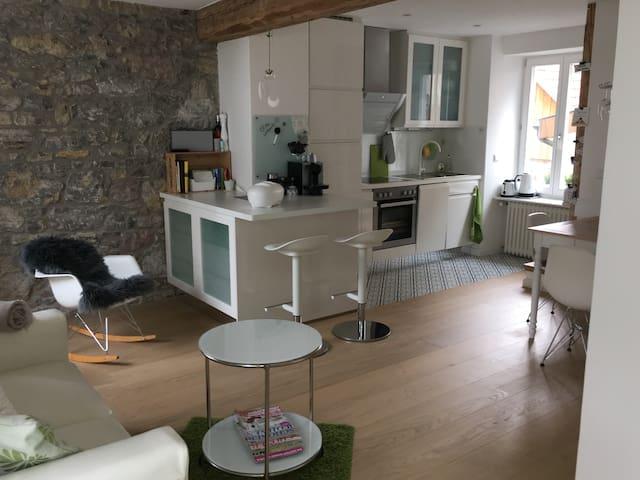 Stil- und liebevoll eingerichtetes Haus in Lörrach - Lörrach - Talo