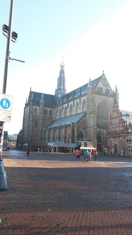 Luxurious modern house Haarlem city centre - Haarlem - Kabin