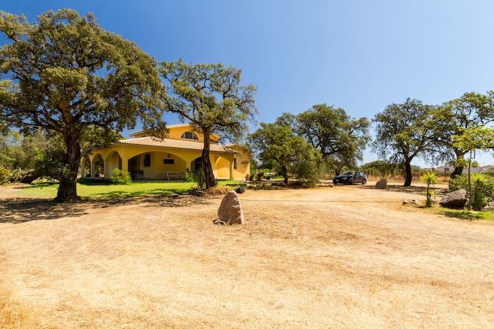 Bella villa nella periferia di pula - Pula