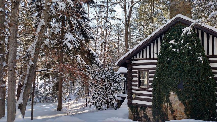 Log Cabin Near Gettysburg - Fayetteville - Cabaña