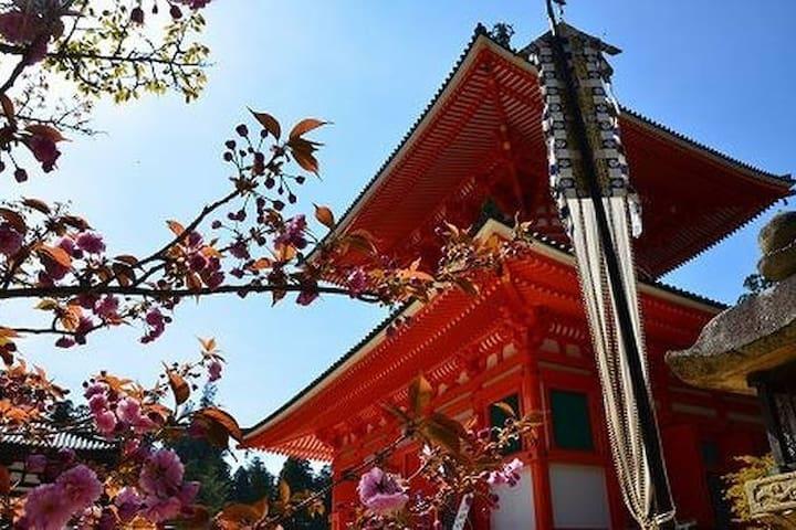 Koyasan near hear#1 double+single - Hashimoto-city - Casa