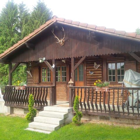 chalet ,terrasse,étang,parc 1 ha - Gumbrechtshoffen - Hytte (i sveitsisk stil)