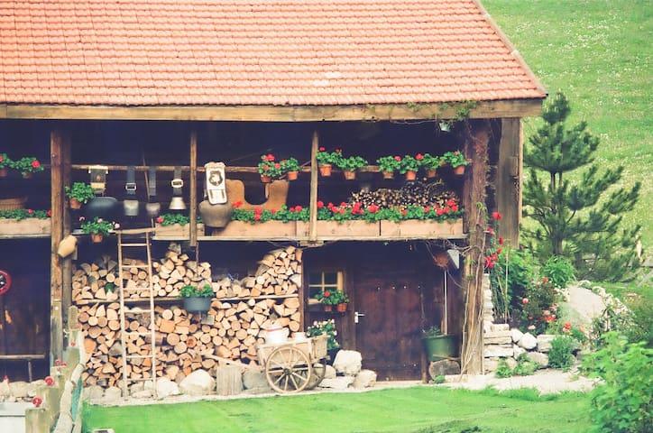 Suisse typique, Heidiland. Suite d'exception. - Haut-Intyamon