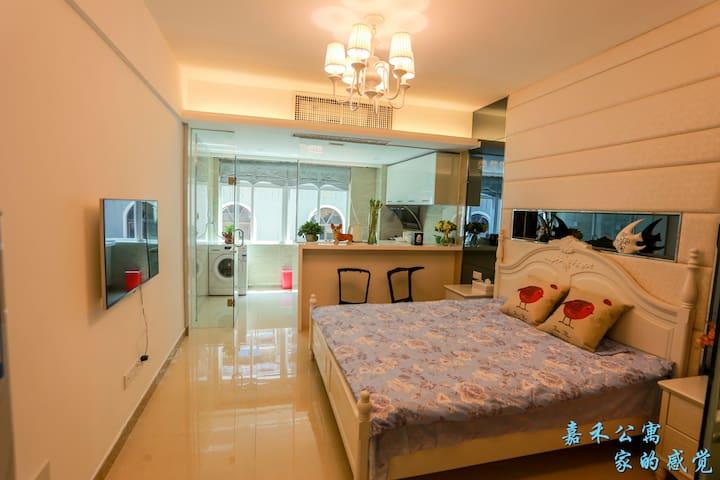 三亚嘉禾公寓舒适大床房 - Sanya