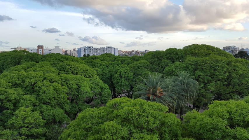 SAN TELMO LUXURY PARK VIEW - Buenos Aires - Wohnung