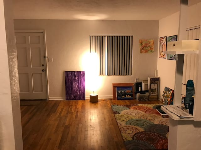 1 bedroom Apartment 5 minutes from midtown - Gainesville - Daire