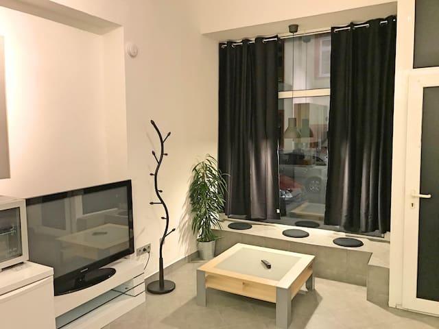 1 Zimmer Appartement bis zu 5Personen Nähe Zentrum - Würzburg - Apartmen