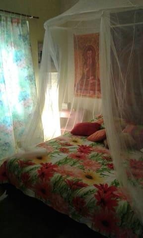 Room in appartement  city center - Valence - Lägenhet