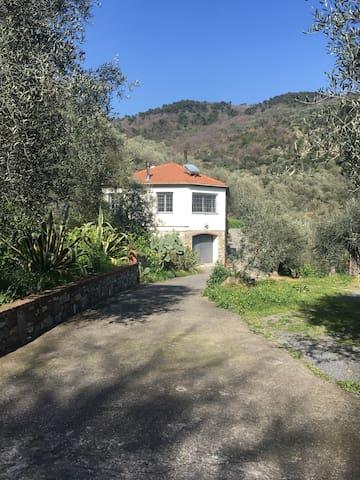 Casa Mediterranea - Diano Marina - Maison