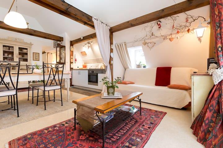"""""""L'ÂME d'ANTAN""""  ** - Colmar - Appartement"""