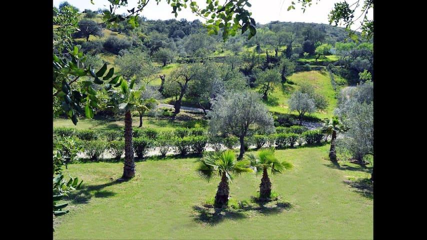 Rustic quiet house, pool & garden - São Brás de Alportel - Casa