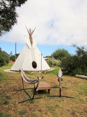 Tipi Stay on Permaculture Farm - Burnside - Tipi