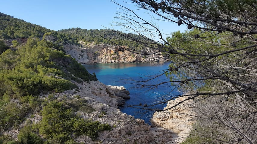 Sea & Forest Cala San Vicente, Apto vistas al mar - Cala de Sant Vicent - Apartamento
