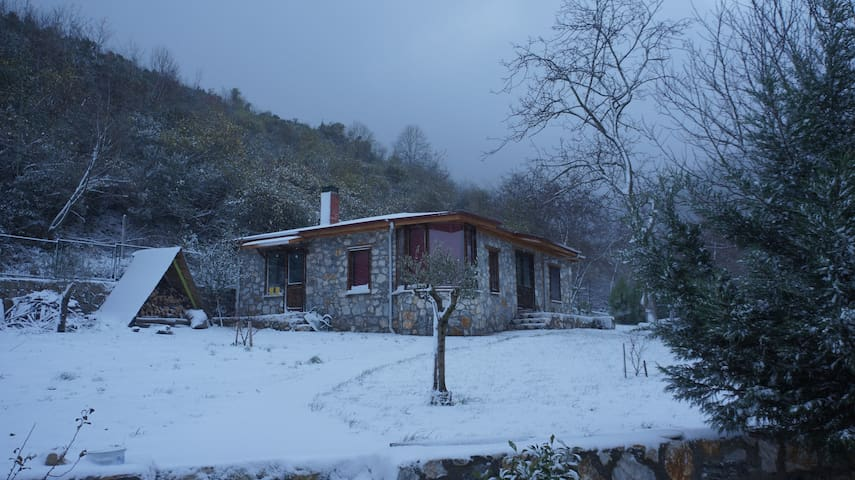stone cottage in a moonlit garden, very peaceful - Yalova - Natuur/eco-lodge