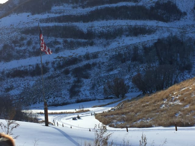 Dog friendly, quiet, country setting. - Steamboat Springs - Appartement