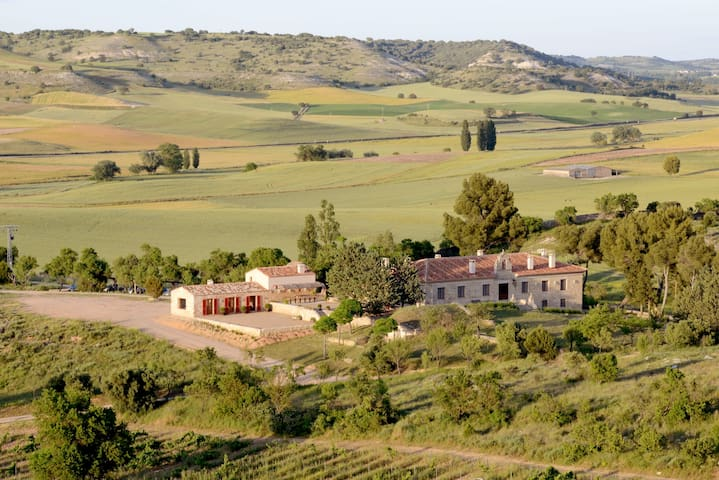 Finca El Cercado. Enjoy nature, culture and wine - Baltanás - Villa