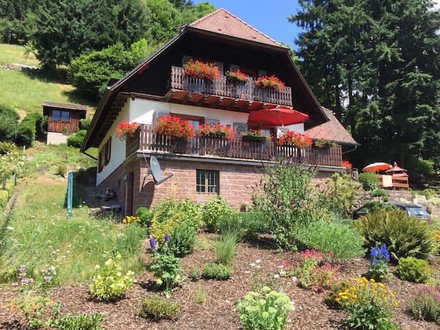 Beautiful 5 bdrm Black Forest house - Ottenhöfen im Schwarzwald - Dom