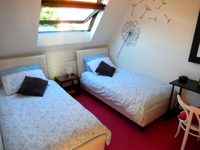 Lovely Cosy Twin with B'fast in heart of the City - Winchester - Dom
