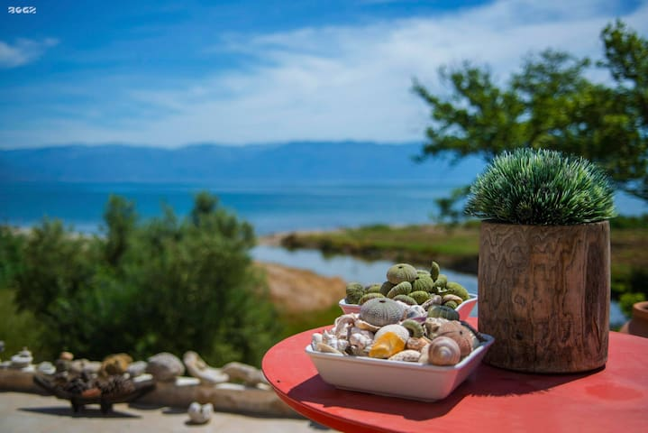 Seaside Cottage in a Private Olive Field - Petalidi - Ev