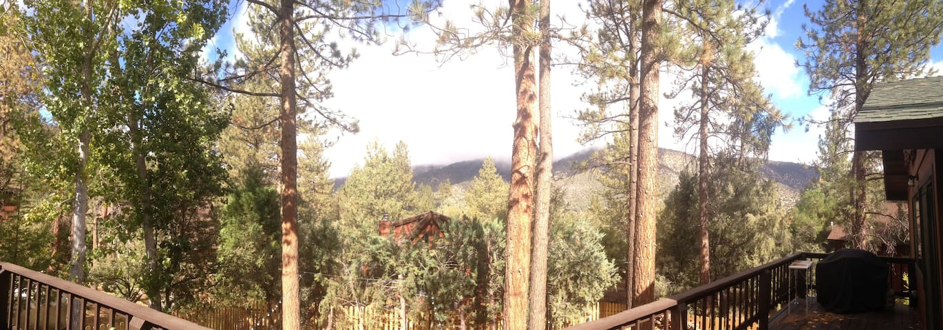 Mountains in the Forest - The Ultimate Retreat - Pine Mountain Club - Casa