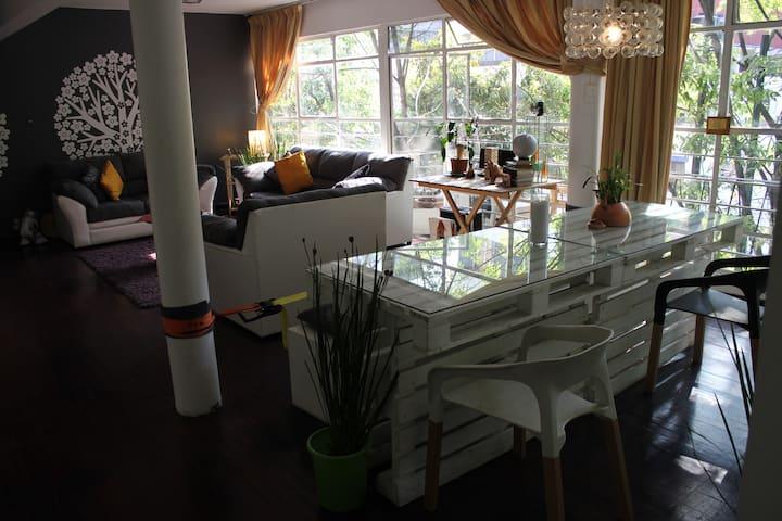 Sunny room in stylish apartment in Condesa - Ciudad de México - Apartament