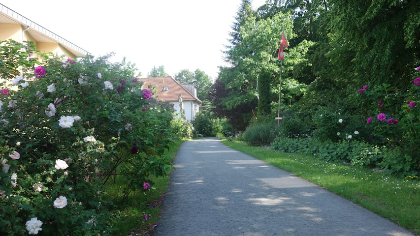 two quiet rooms in schloss hamborn - Borchen - Bed & Breakfast